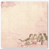 16701491 MADELELINE_SONGBIRDS_FRONT