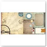 17001565 WILD CARD_SPEEDWAY