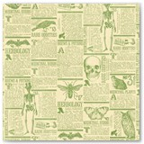 08-green-newspaper-PR