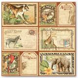 11-jungle-expedition-frt-PR-copy