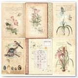 17601785_garden_journal_front