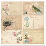 17601793_garden_journal_post_card_front
