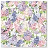 19501361_Secret_Garden_Front