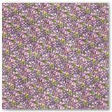 5-violet-vale-frt-PR-copy