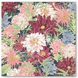 4502151-Blossom-frt