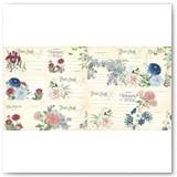 4502164-Blossom-ephem-cards-back