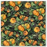 4502275-Pumpkin-Patch-frt