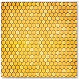 7310483_bb_bee-utiful_you_honeycomb_front_paper
