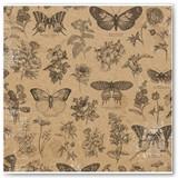 7311092_BB_BotanicalJournal_OSPaper_Butterflies_Front
