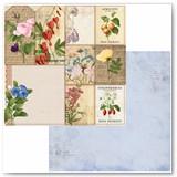 7311101_BB_BotanicalJournal_OSPaper_Packets