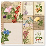 7311101_BB_BotanicalJournal_OSPaper_Packets_Front